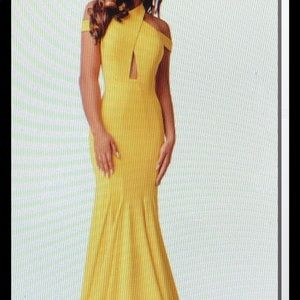 Coutoure evening gown